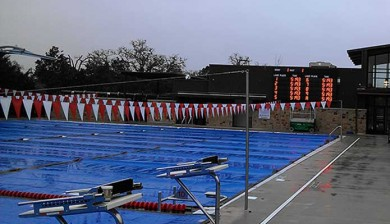 austin aquatics and sports academy swimming scoreboard